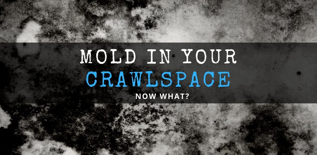 I Have Mold in My Crawl Space - Now What? by SANAIR IAQ
