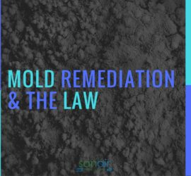 Laws Anyone Working in Mold Remediation Should Know | SANAIR IAQ