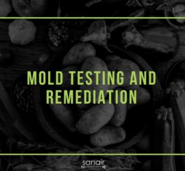 Mold Testing and Remediation; Is Your Home Making You Sick? | SANAIR IAQ